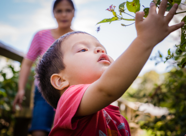 Boy with his mother reaching a leaves in his garden